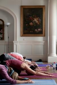 Asanas | Detox Yogi - Yoga Holidays, Adventures & Retreats with Wenche Beard