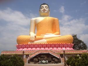 BUDDHA YOGA IN SRI LANKA - Yoga Holidays, Adventures & Retreats with Wenche Beard